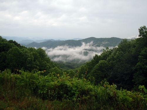 Appalachian Trail, view at Stecoah Gap