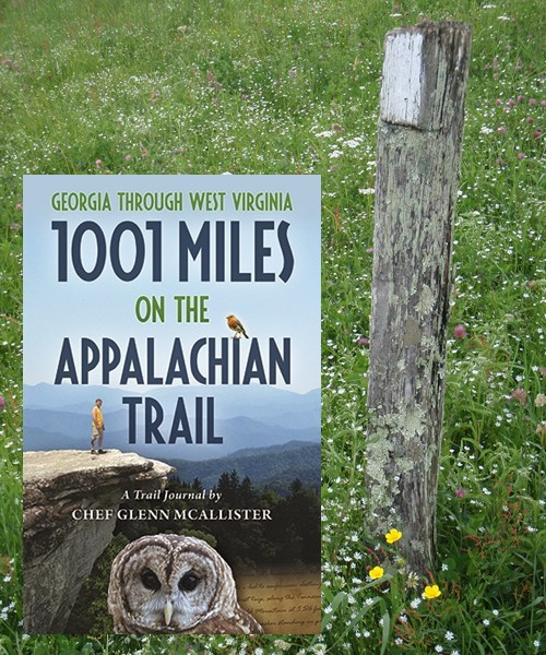 Appalachian Trail, white blaze on post