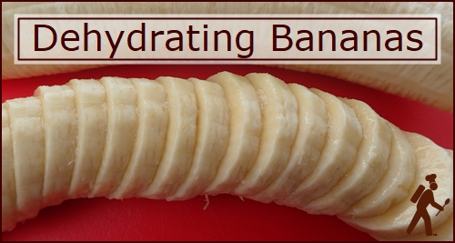 Dehydrating Bananas: Slice them about an eight inch thick.