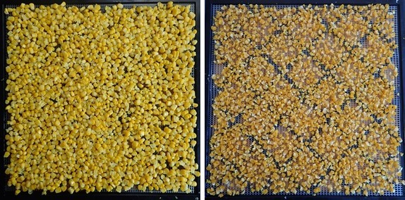 Dehydrating Corn: Before and After.