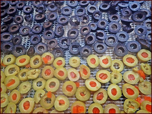 Dehydrating Olives: Sliced on Excalibur dehydrator tray.