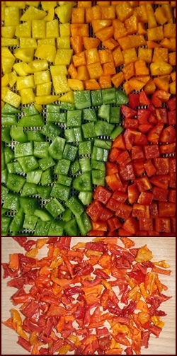 Dehydrating Bell Peppers