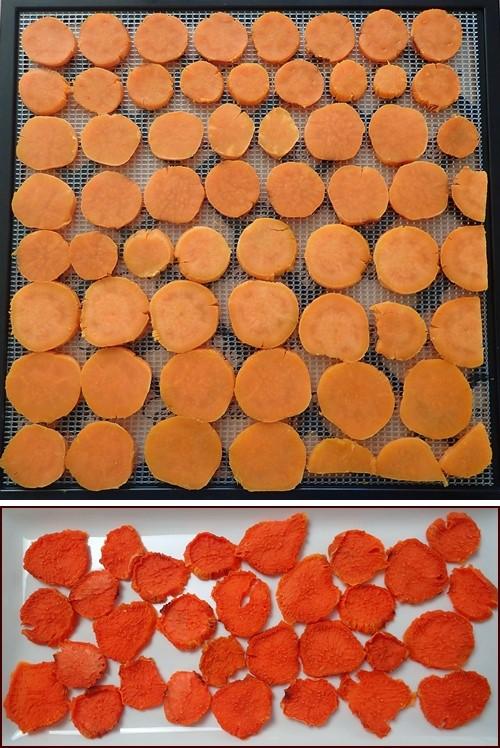 Dehydrating Sweet Potato Chips
