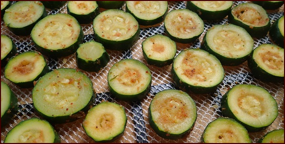 Dehydrating zucchini chips steamed and seasoned.