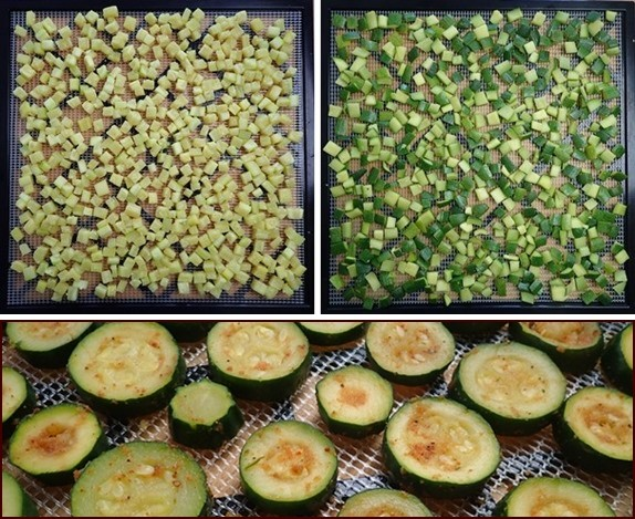 Dehydrating Zucchini: Cubes, Skins, Chips.