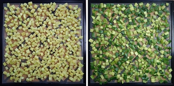 Dehydrating zucchini cubes and skins (before)