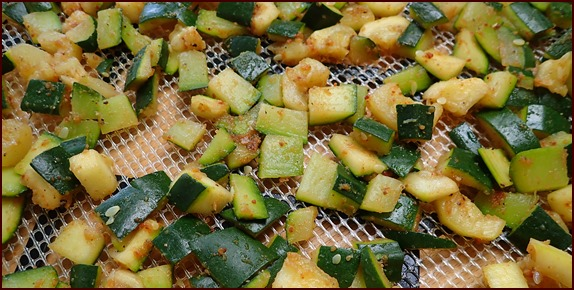 Seasoned zucchini skins on dehydrator tray.