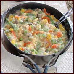 Dehydrator Recipe: Mashed potatoes with meat and vegetables.