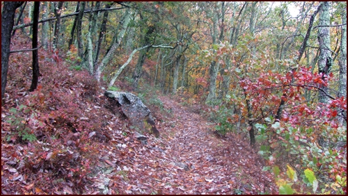 Appalachian Trail, Shenandoah National Park, Fall.