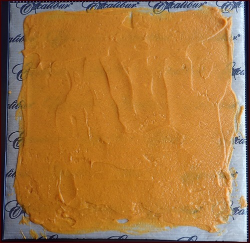 sweet potato pudding on Excalibur dehydrator tray.