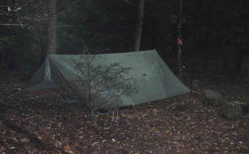 Tarp set up in pine grove, morning after huge storm on the Appalachian Trail
