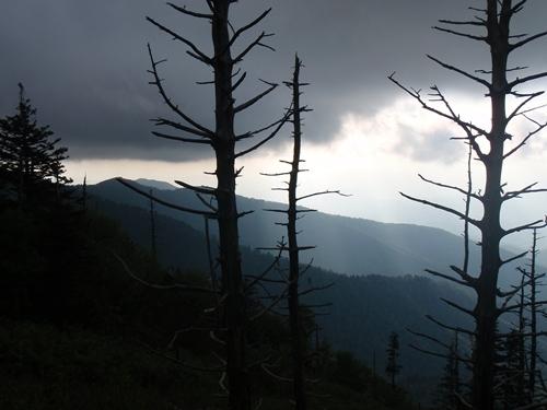 Dark Clouds over the Appalachian Trail near Standing Bear Farm.