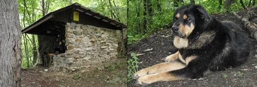 Laurel Fork Shelter, Appalachian Trail, Tennessee.