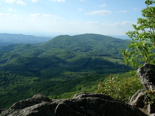 View from the Appalachian Trail, Roan Highlands
