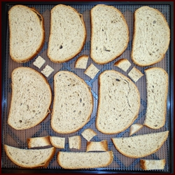 Making Bread Crumbs with Rye Bread. Shown on Excalibur Dehydrator Tray.