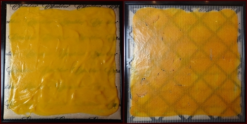 (l) Butternut squash soup spread thinly on Excalibur dehydrator tray. (r) Dried soup flipped over directly on mesh sheet.