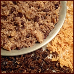 Dehydrating chicken dried chicken tips recipes forumfinder Image collections