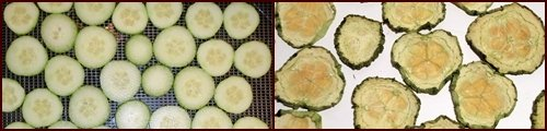 Dehydrating Cucumbers