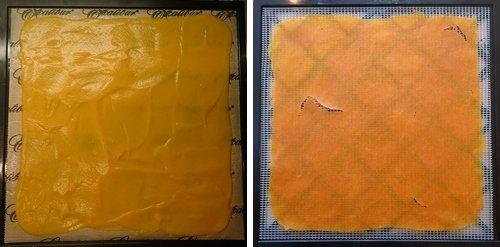 Dehydrating Sweet Potato Soup, before and after on Excalibur dehydrator trays.