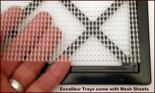 Excalibur Food Dehydrator Mesh Sheet and Tray.