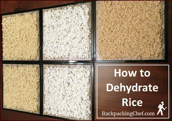Dehydrating rice shown on Excalibur dehydrator trays. Rice precooked in broth.