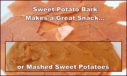 Sweet Potato Bark makes a great snack, and it can be turned into mashed sweet potatoes.